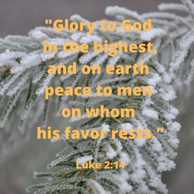 _Glory to God in the highest, and on earth peace to men on whom his favor rests._ Luke 2_14