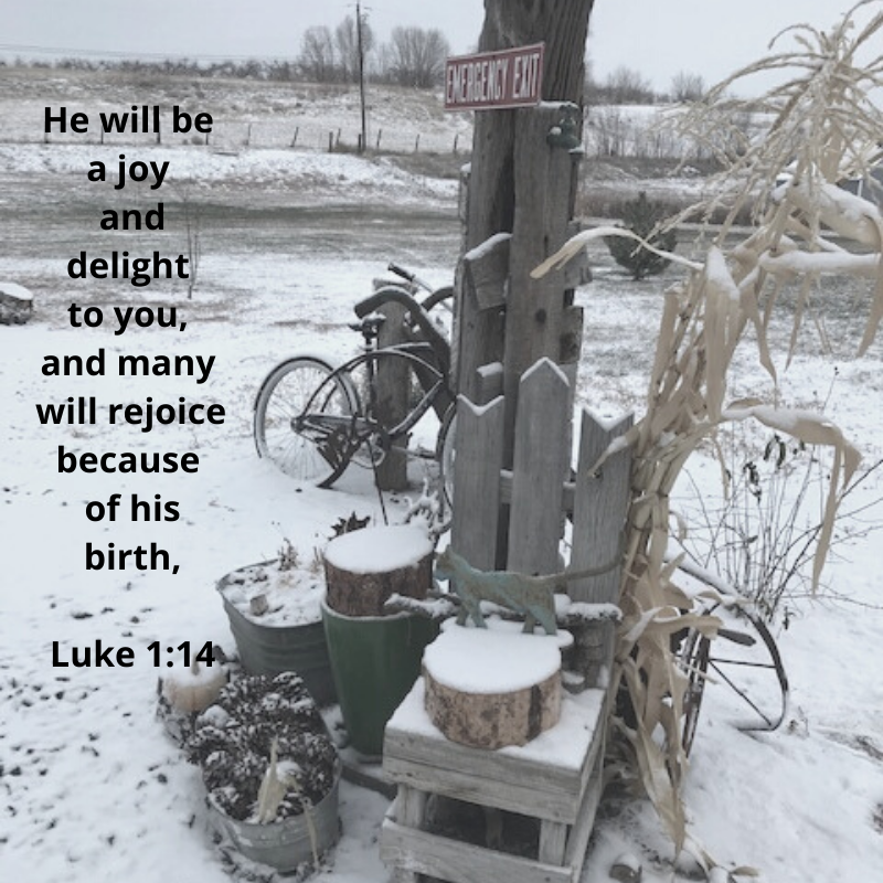 He will be a joy and delight to you, and many will rejoice because of his birth, Luke 1_14