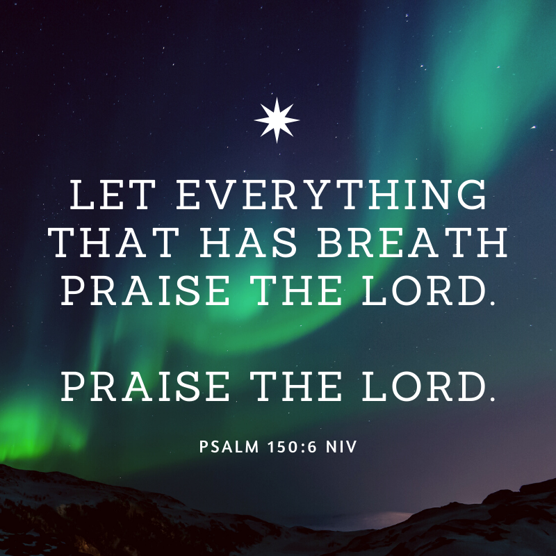 Let everything that has breath praise the Lord. Praise the Lord.