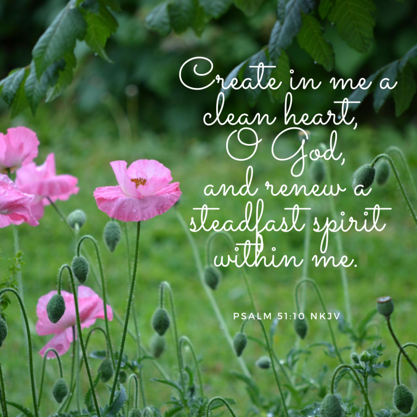 Create in me a clean heart, O God, and renew a steadfast spirit within me.